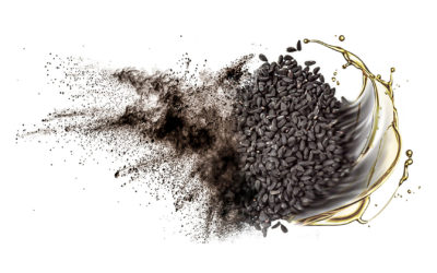 The Incredible Power of Black Cumin Seed to Fight Inflammation